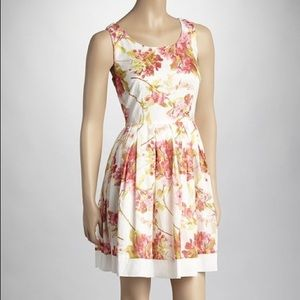 Taylor Floral Cotton Pleated Fit and Flare Dress